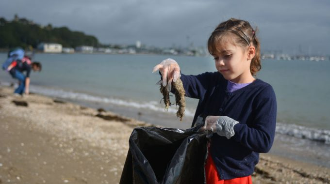The Great 'Porchy' Beach Clean!